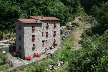 The Mill, sleeps 10, river pool - Fivizzano