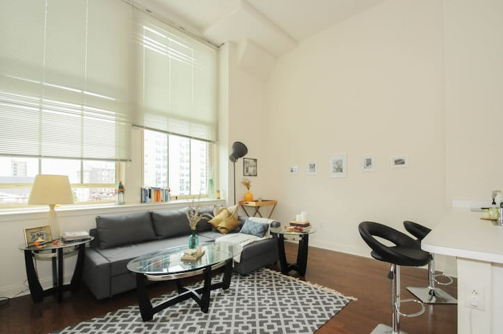 850sqft 1BRLoft Center City HEART - Philadelphia - Loft