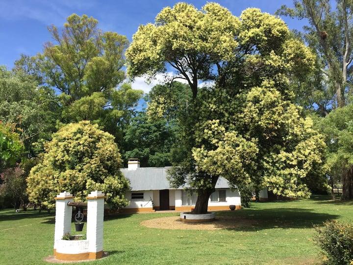 Grand  cottage au coeur du campo