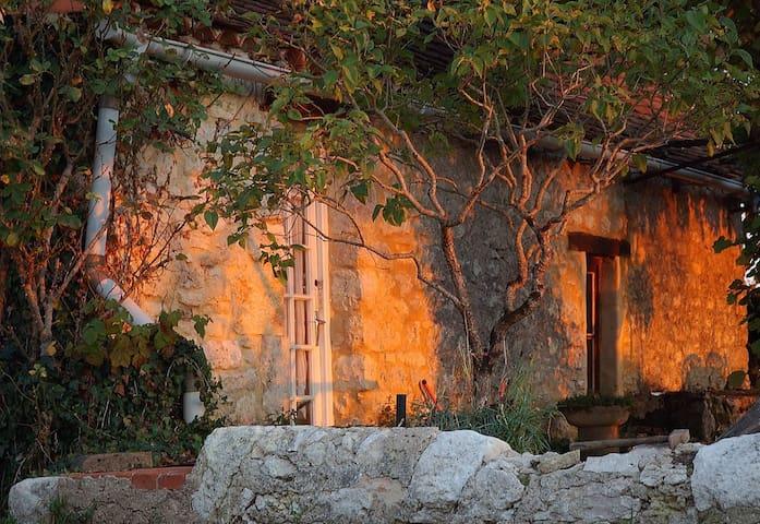 Evening light on Cottage