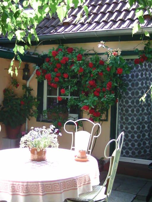 Frühstücksplatz im Garten