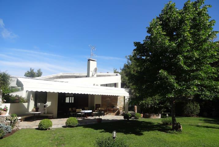 Beautiful Villa in Sani
