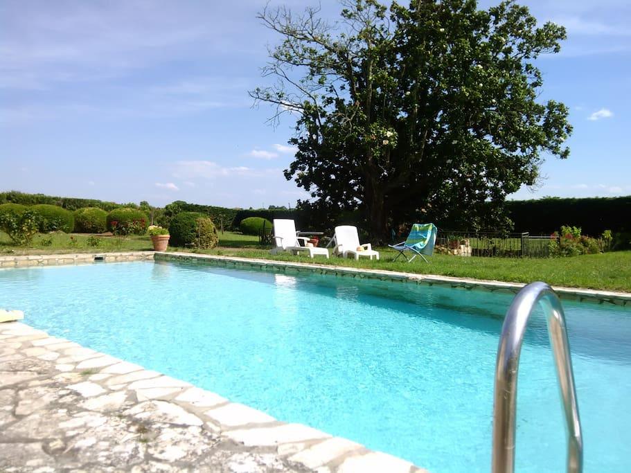La grande piscine vous attend !