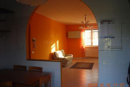 App.ammobiliato c/o casa O.Flacco - Venosa