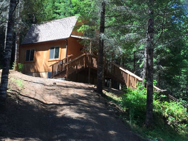 Lone Wolf Cabin, pet friendly