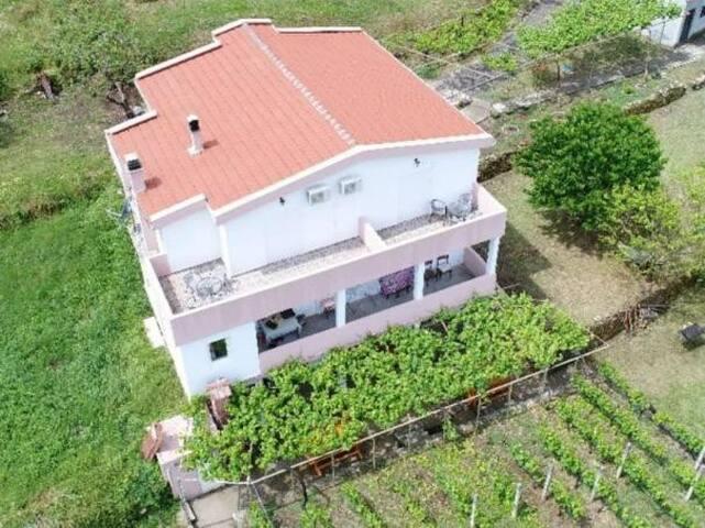 Farm House Vržina