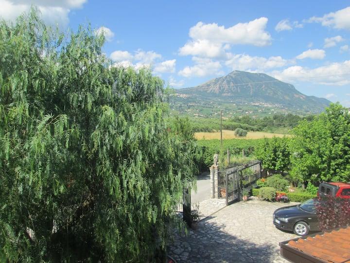 Italian farm. Room Karina