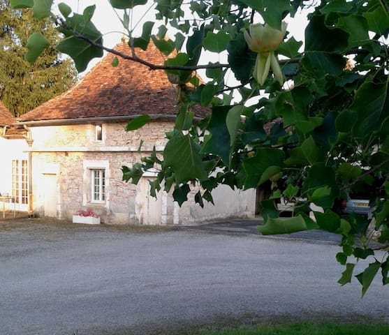 Dovecote cottage with Huge Pool - Saint-Martial-d'Albarède - Talo