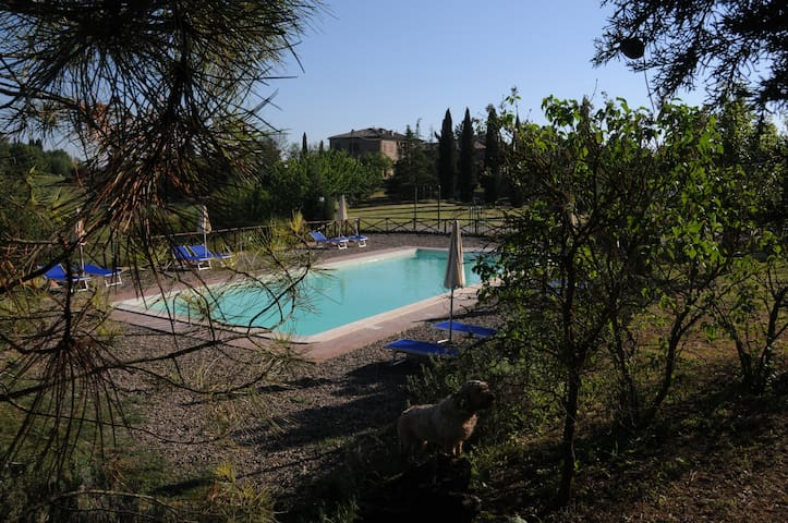 B romantic Tuscany apartment