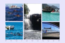 Dolphin watch, swimming with Dolphin, sightseeing, barbecue on ile six Benitier