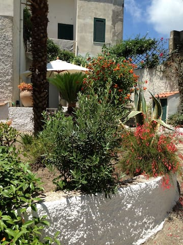 Stanza doppia, Sant'Angelo, Ischia - Sant'Angelo - Bed & Breakfast
