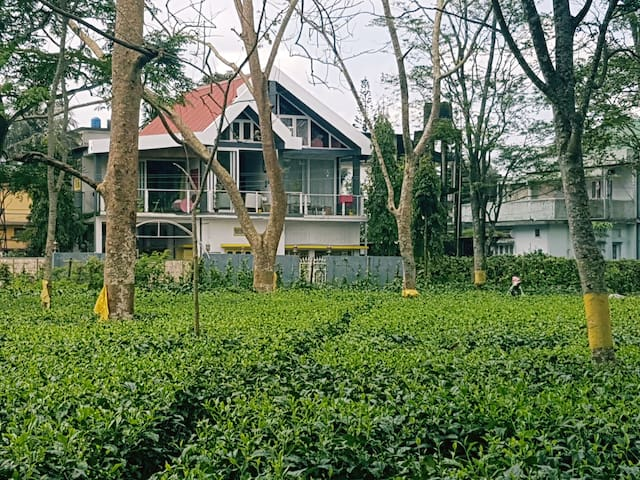 The Pink Room: Homestay by the tea garden