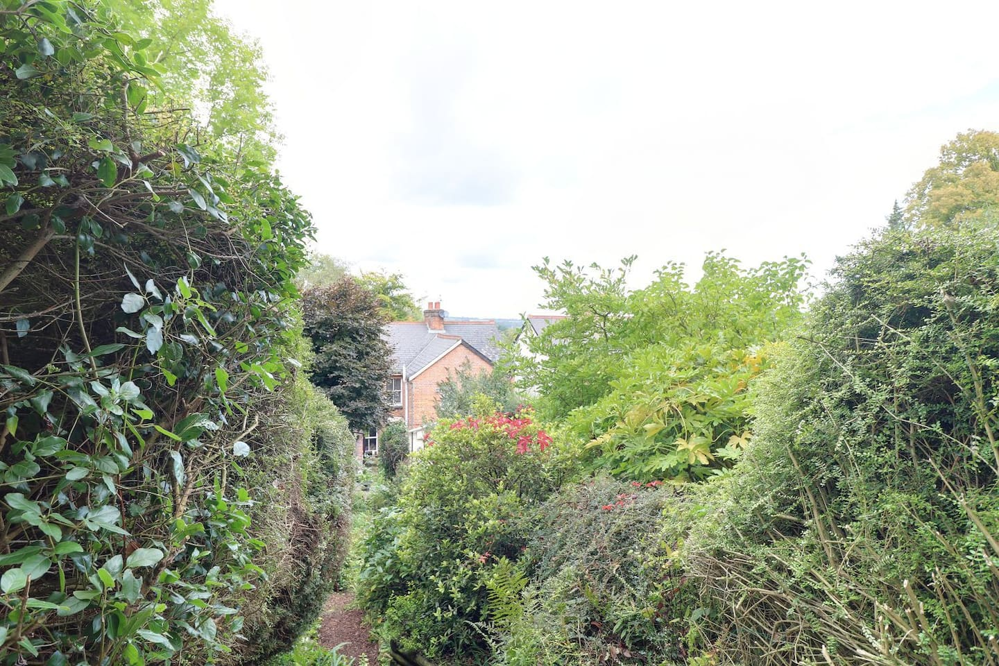 View from top of the garden