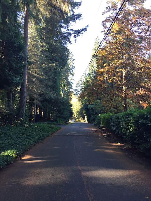 Private road - great for walks and riding bikes
