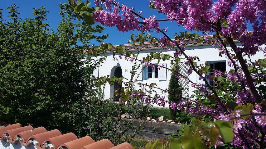 Vacances familiales à la Rochelle - Nieul-sur-Mer - Casa