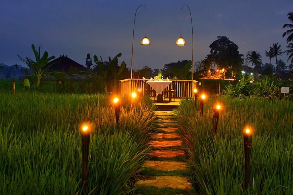 Romantic dinner in the rice terrace