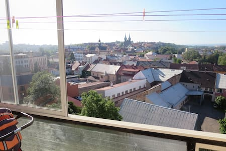 Nice city,  one hour to Prague - Chrudim - Appartement