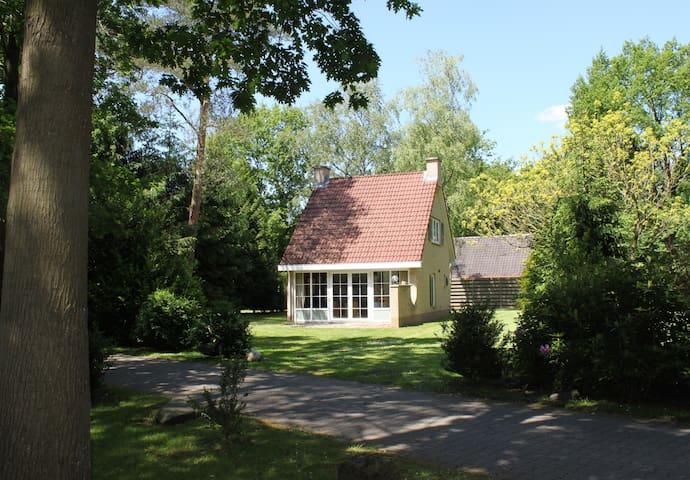 Rustieke 6p bungalow in het bos. - Hellendoorn - Stuga