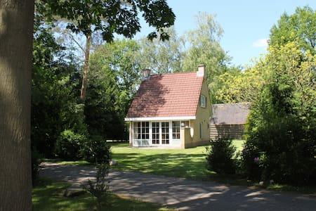 Rustieke 6p bungalow in het bos. - Hellendoorn - Mökki