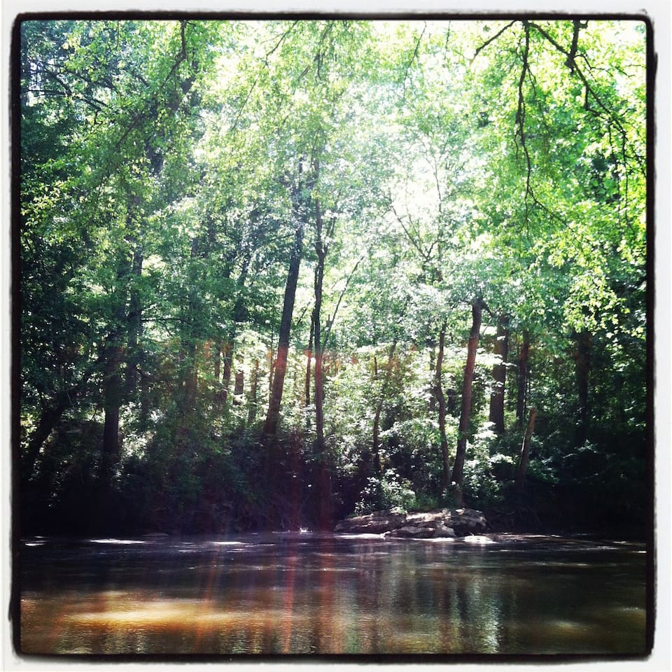 The Middle Oconne River is a wildlife refuge that includes Blue Heron, Hawks, Owls, Deer, River Otter, Beaver, Fox, Coyotee, Turtles, and more. You can sink a chair right in the sandbar and spend the day in the wilderness sanctuary of this backyard.