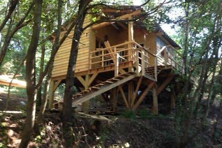 Chalet / Cabane sur pilotis au milieu des arbres - Cervione