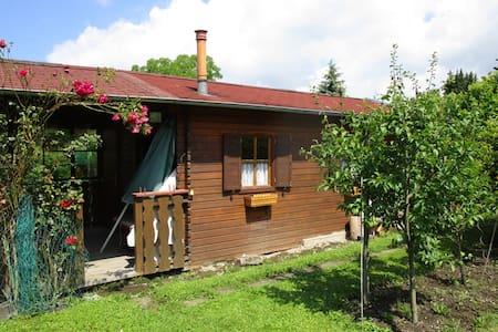 Kleine gemütliche Gartenhütte/SAUNA - Lindau (Bodensee)