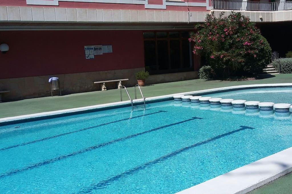 Piscina cerca de playa y discotecas appartements louer for Piscina lloret