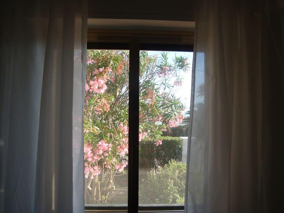 La vista dalla camera da letto.