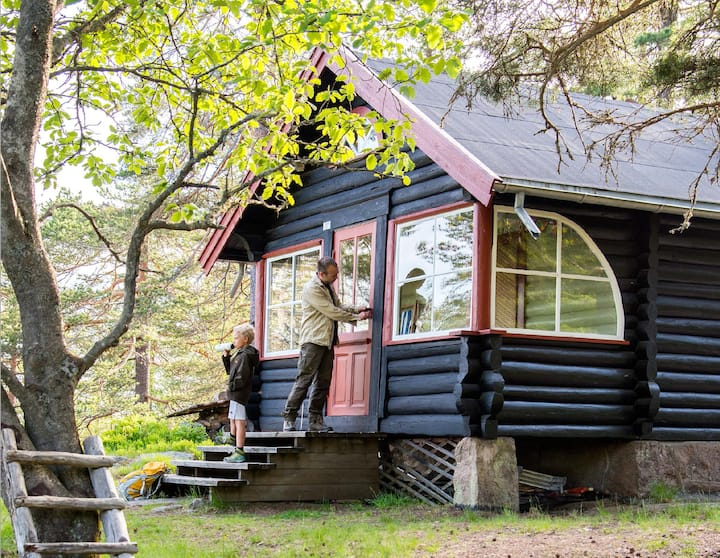 Forest paradise: authentic cabin