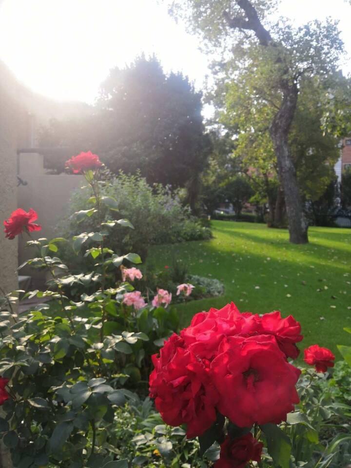 A Garden House in Sandton CBD Area