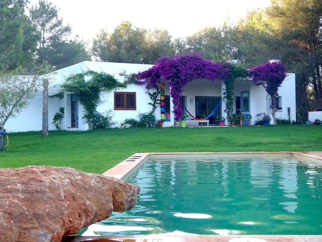 Tranquility in spacious new finca