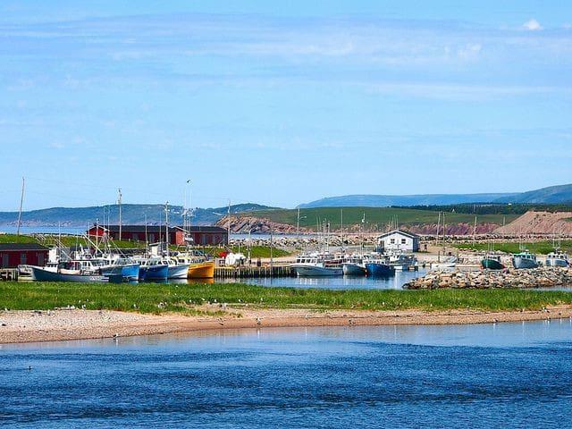 Margaret Harbour Dock