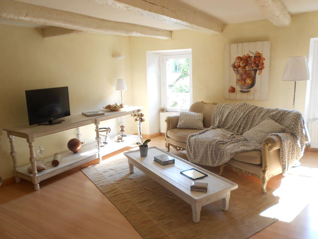 Le coin salon avec canapé, écran plat, et Wifi