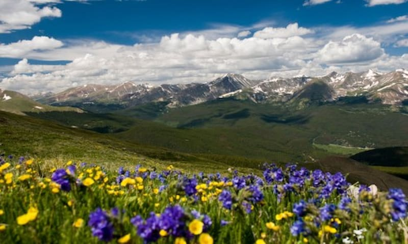 Drop-dead gorgeous, stunning views