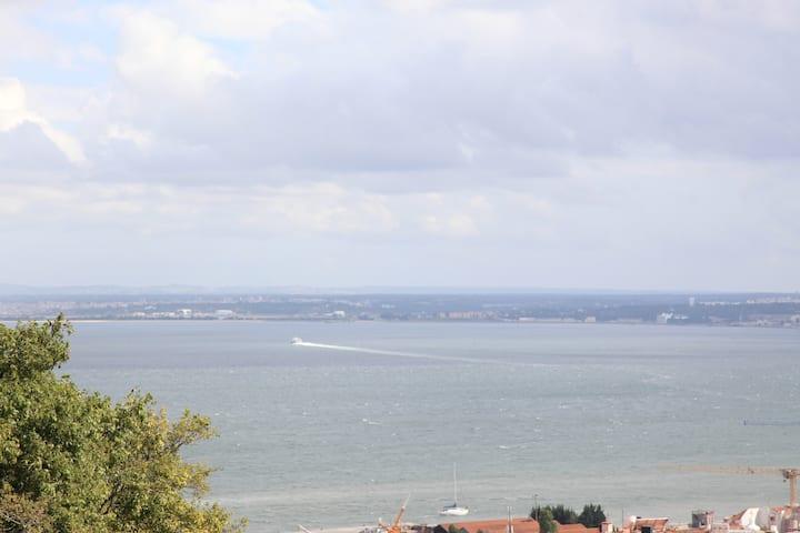 São Vicente 4