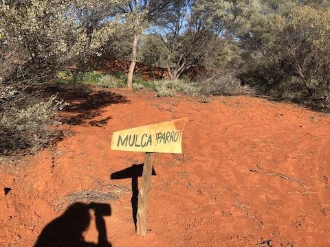 Mulga Parrot Van/Camp Site at Nallan Station