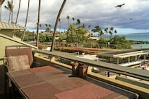 View from the Lanai: Tennis Court and Palm Trees and Island