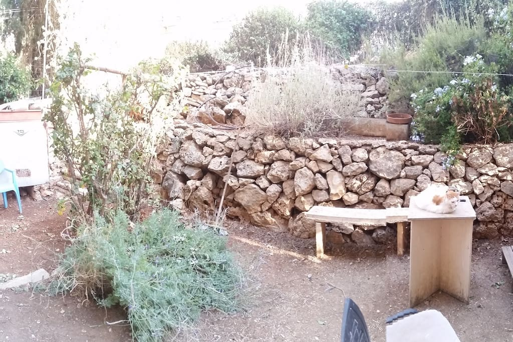 Our lovely private Garden