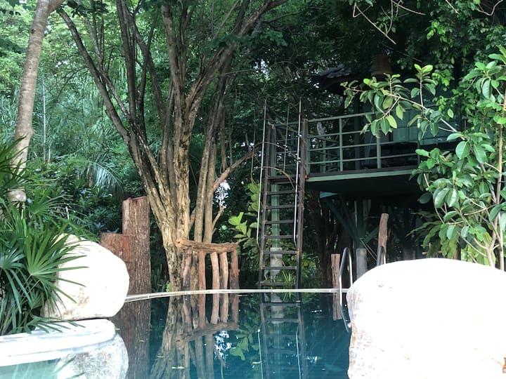 JungJa hut#Treehouse@River Kwai