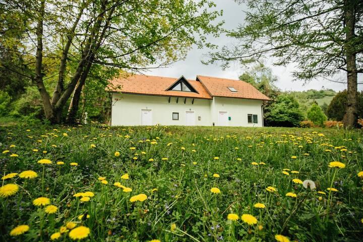 Park loft - Maribor - House