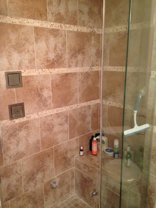 Custom Shower in Master Suite features Steam and Body Jet options