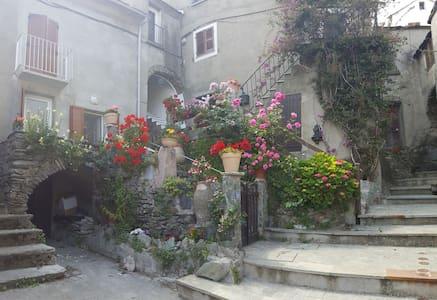 """Maison typique de village à Vignale """"la Comtesse"""""""