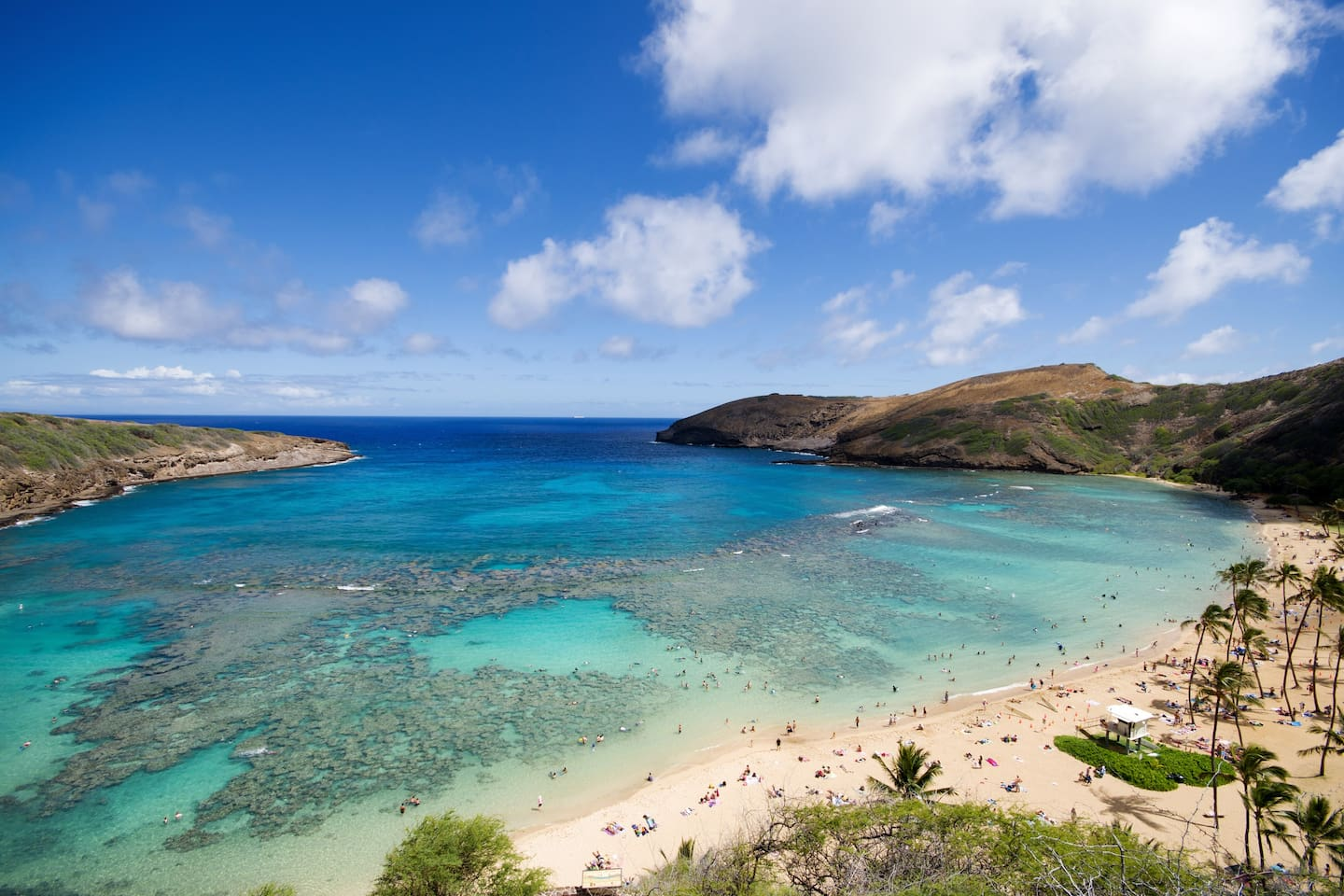 Hanauma Bay a delightful place to snorkel just 2 minutes away by car.