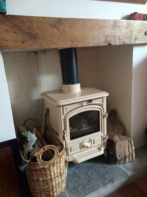 Wood burning stove in the living room