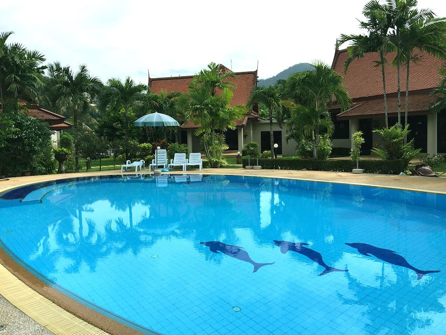Activity Area, Large Swimming Pool