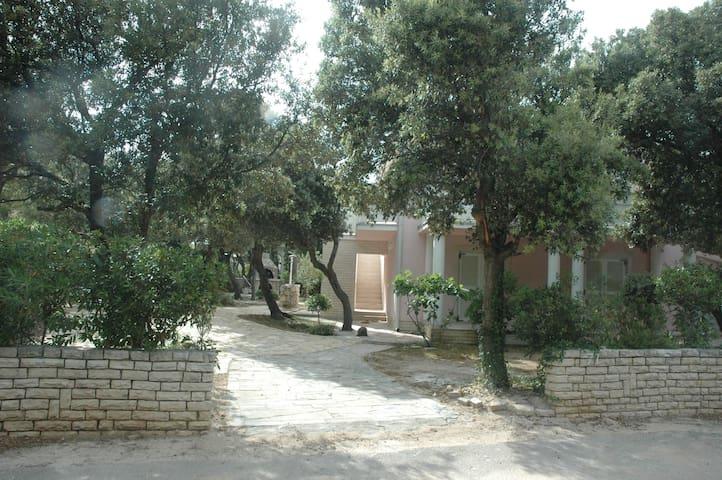 Apartment in middle of paradise # 2 - Šimuni - Appartamento