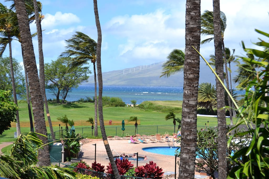 view from the living room and lanai