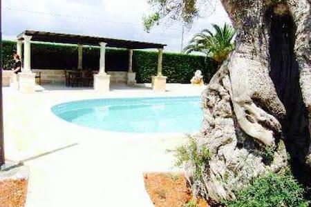 Rustico con piscina privata - Corsano