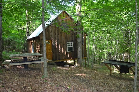 Secluded Cabin in the Woods - Cincinnatus