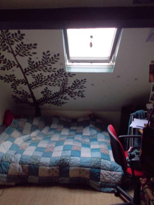 Room: Lit/bed